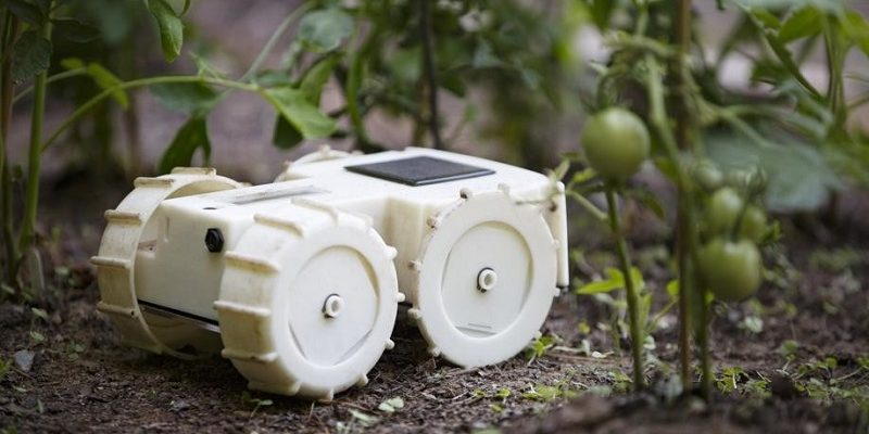 The creator of the roomba aspires to robotic the garden of your house