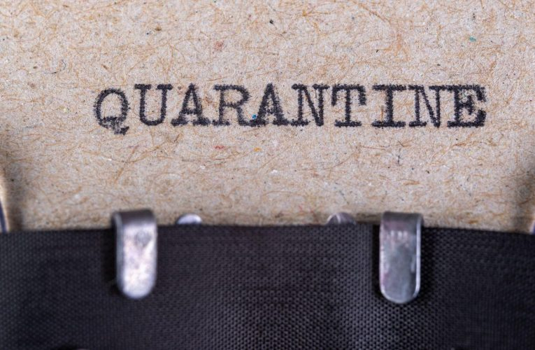 How to change your daily routine during the quarantine